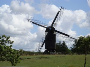 "Windmühle von ""Hjerl Hede"""